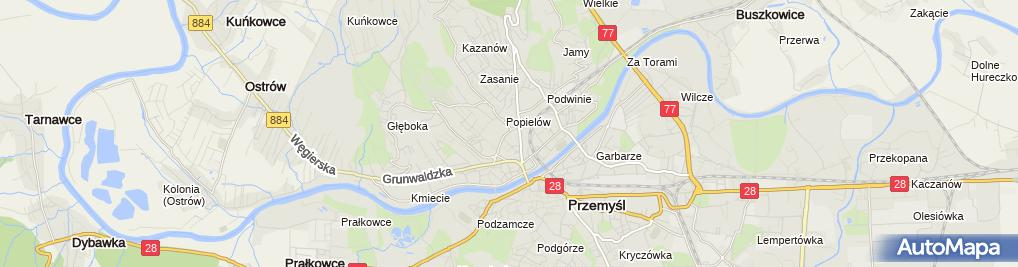 Zdjęcie satelitarne Bronisława Ciszewska - Działalność Gospodarcza