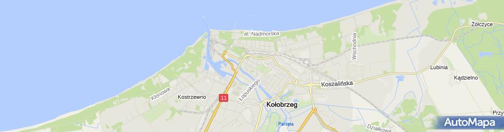 Zdjęcie satelitarne CH i P Remigiusz Jakimowicz i Marcin Kościński