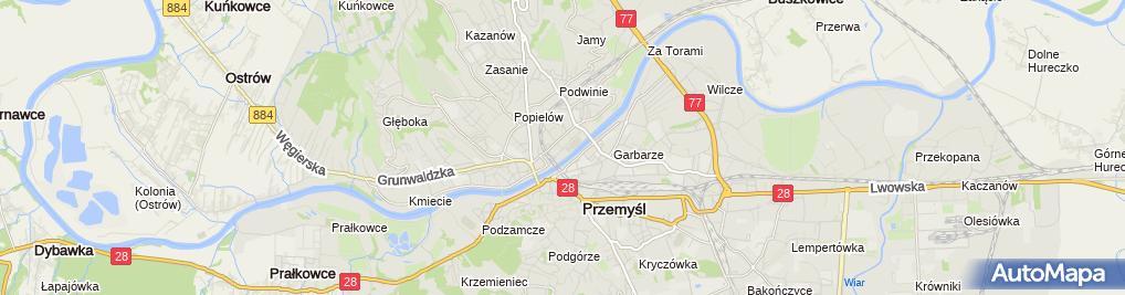 Zdjęcie satelitarne Danuta Szlachetka Wyrób i Sprzedaż Pierogów
