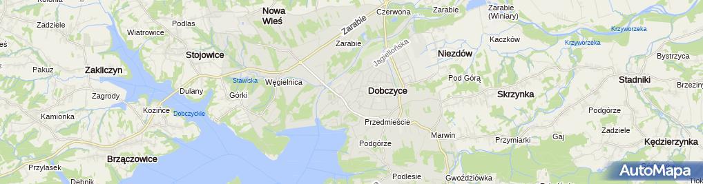 Zdjęcie satelitarne Dariusz Glonek Auto-MIX