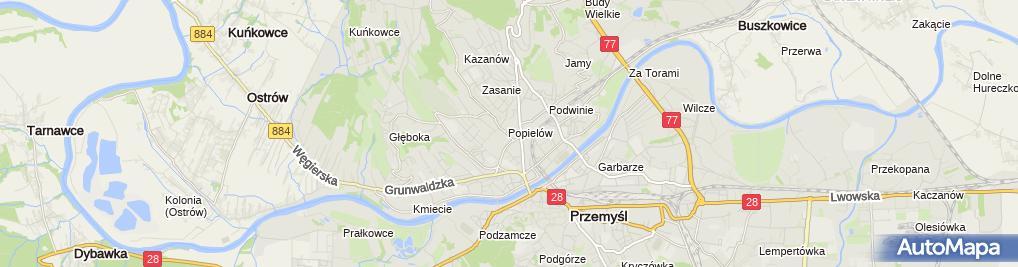 Zdjęcie satelitarne Dariusz Kasia - Działalność Gospodarcza