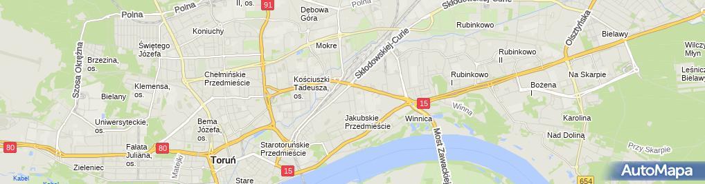 Zdjęcie satelitarne DNT Usługi Porządkowe