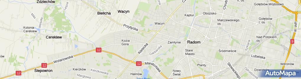 Zdjęcie satelitarne Dominik Chochoł Wspólnik Spółki Cywilnej Timber Poland