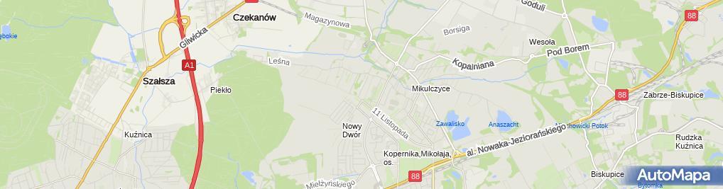 Zdjęcie satelitarne Dorsamet Andrzej Smutek