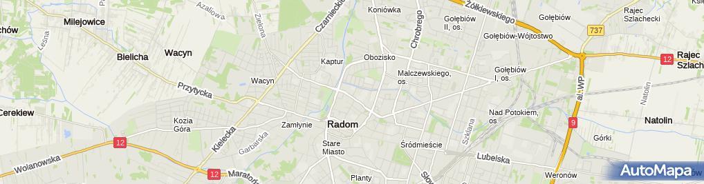 Zdjęcie satelitarne Elżbieta Antczak-Pajączkowska