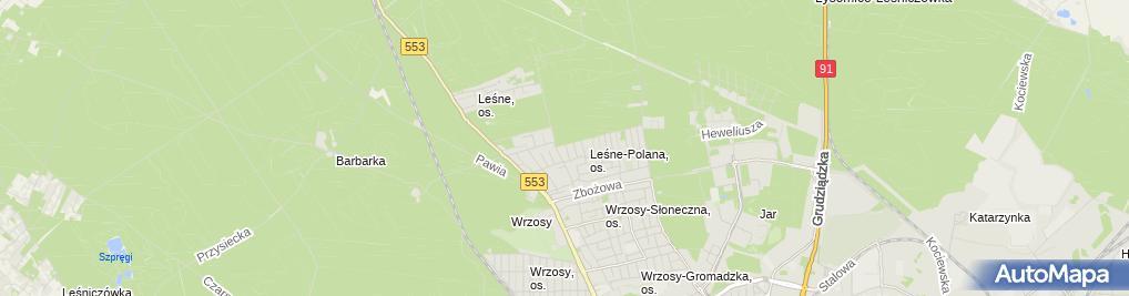 Zdjęcie satelitarne EPE Consulting Beata Wolska