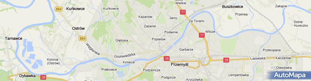 Zdjęcie satelitarne F.H.U.Drewik Zofia Bartocha