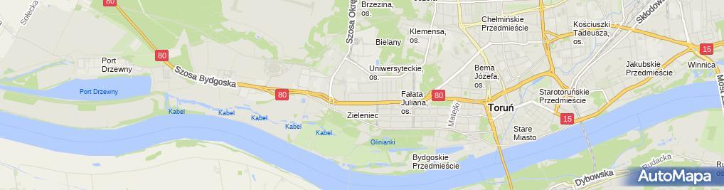Zdjęcie satelitarne Firma Handlowo-Usługowa Iva Agnieszka Zielecka
