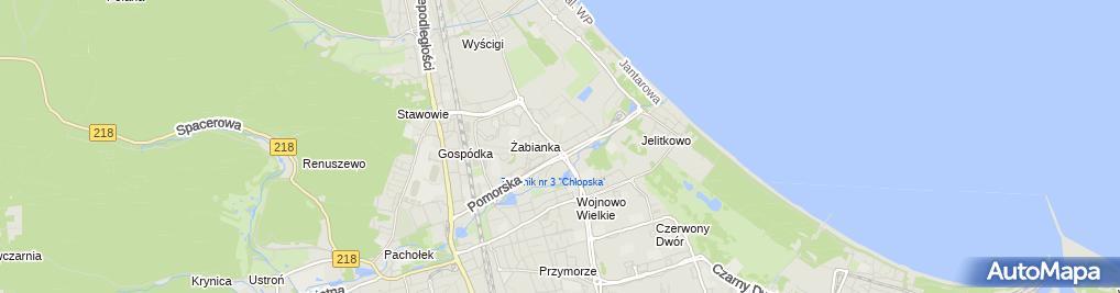 Zdjęcie satelitarne Firma Handlowo Usługowa Trojan