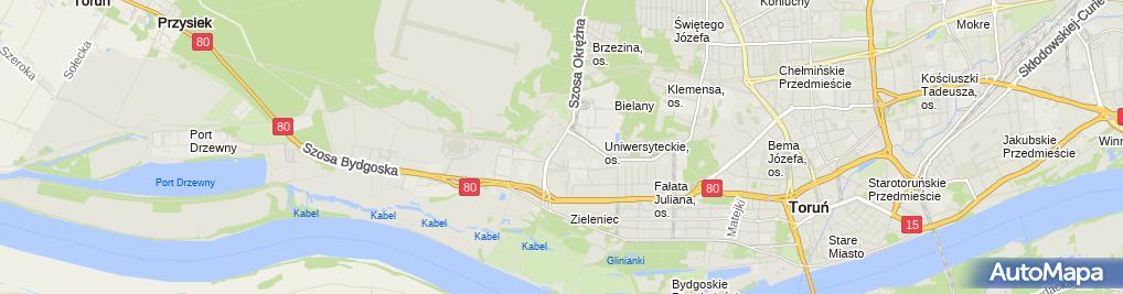 Zdjęcie satelitarne Firma Usługowa Błysk Urszula Majewska