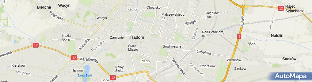 Zdjęcie satelitarne Firma Usługowo-Handlowa Alicja Lechowska