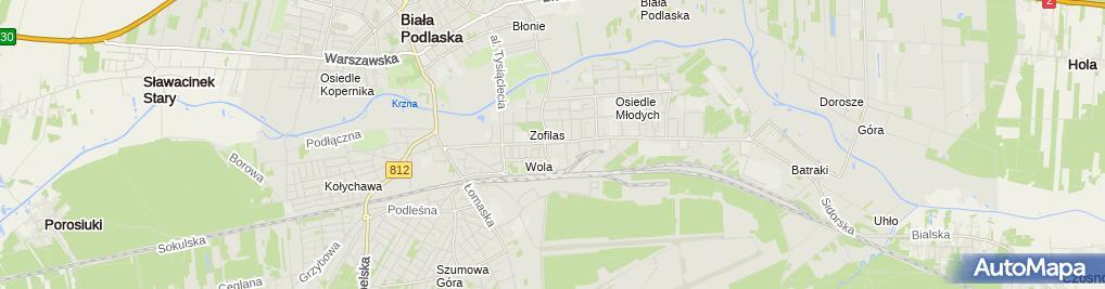 Zdjęcie satelitarne Firma Usługowo Handlowa Autpol