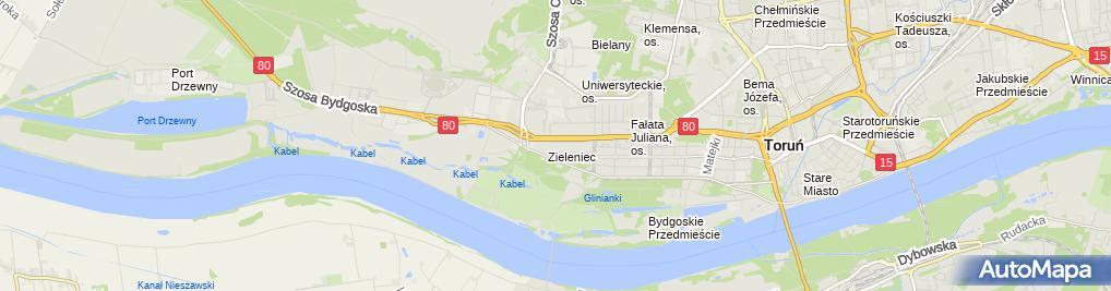 Zdjęcie satelitarne Firma Usługowo Transportowa