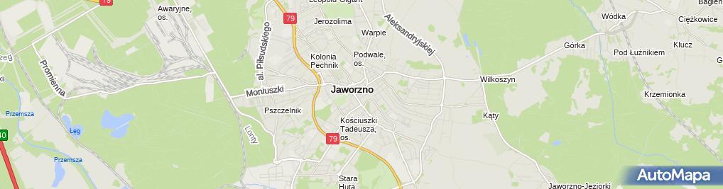 Zdjęcie satelitarne Gamma Brzostek Dariusz Jochymek Jadwiga