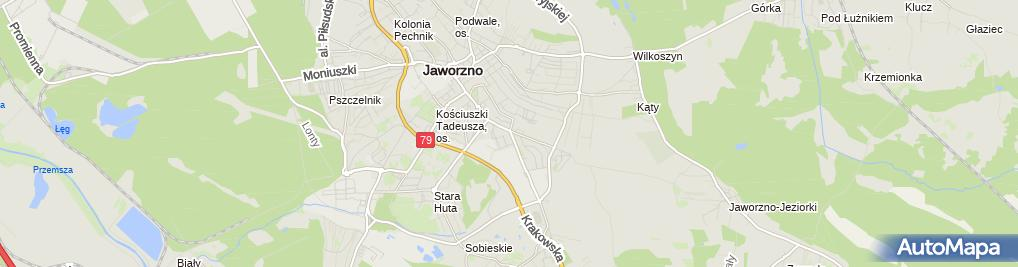 Zdjęcie satelitarne Gazpar Rafał Dobosz Tomasz Zemła Dariusz Buła