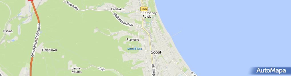 Zdjęcie satelitarne Gkzr Tomasz Kaniewski Marek Głuchowski Józef Rodziewicz Andrzej Zwara