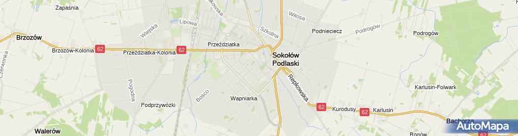 Zdjęcie satelitarne Gołębiewski Mirosław P.P.H.U.Sorbus