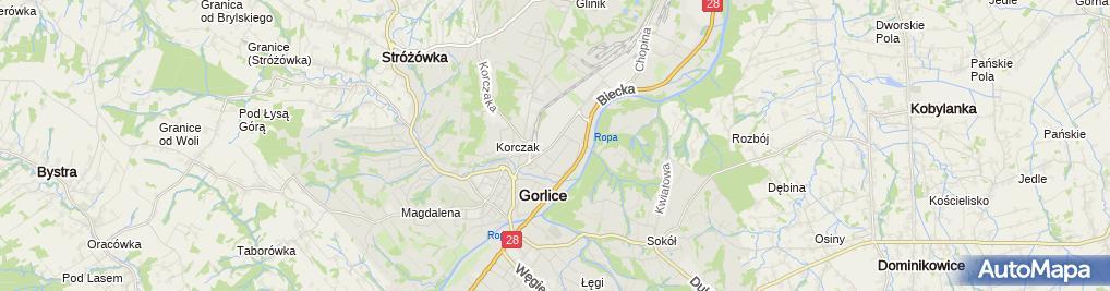 Zdjęcie satelitarne Gorczyca Sławomir Przedsiębiorstwo Handlowo-Usługowe Rowex 1