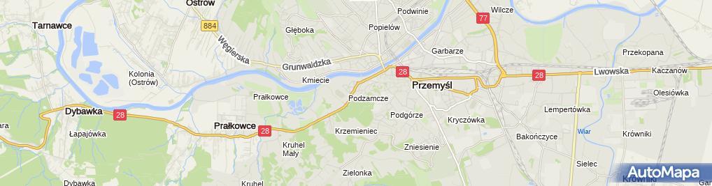 Zdjęcie satelitarne Gospodarstwo Pasieczne P i E Pogorzelec