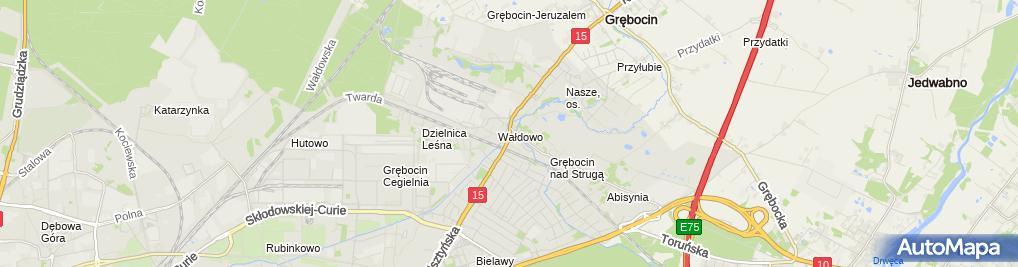 Zdjęcie satelitarne Grawer Dmowski Tadeusz Pawluszek Ewa