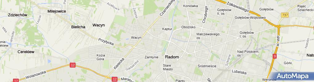 Zdjęcie satelitarne Gregorczyk Bartłomiej