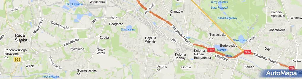 Zdjęcie satelitarne Grzegorz Iżykowski - Działalność Gospodarcza