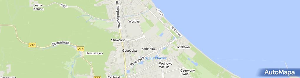 Zdjęcie satelitarne Grzymała