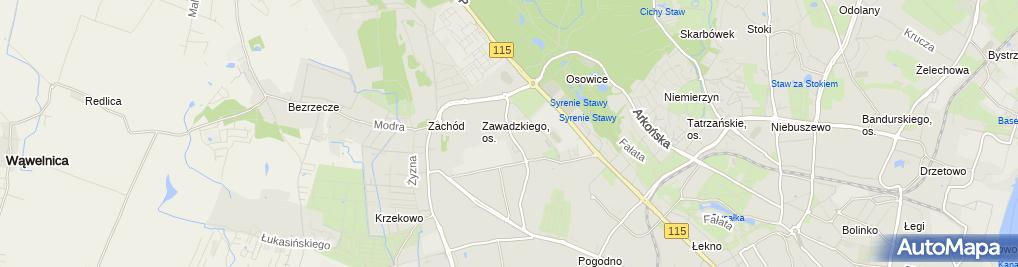 Zdjęcie satelitarne Hand.Art.Spoż.i Przem.Poch.Kraj.i Zagr.Chwesiuk Urszula