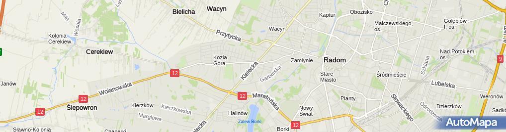 Zdjęcie satelitarne Handel Hurtowy i Detaliczny