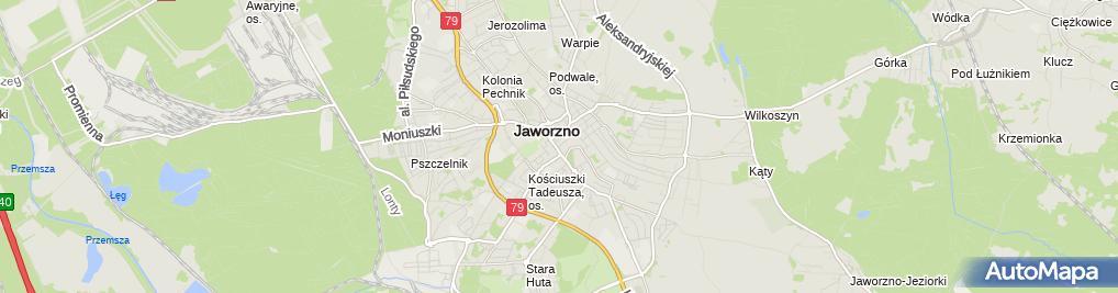 Zdjęcie satelitarne Hanna Balicka - Działalność Gospodarcza