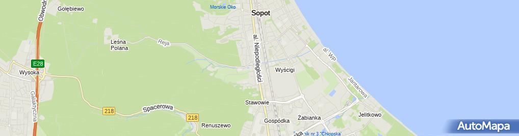 Zdjęcie satelitarne Hanna Łobaczewska-Naskrėt Kompozycje ze Skóry - Ł