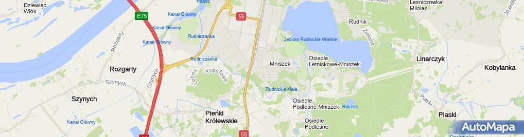 Zdjęcie satelitarne Henryk Żak - Działalność Gospodarcza