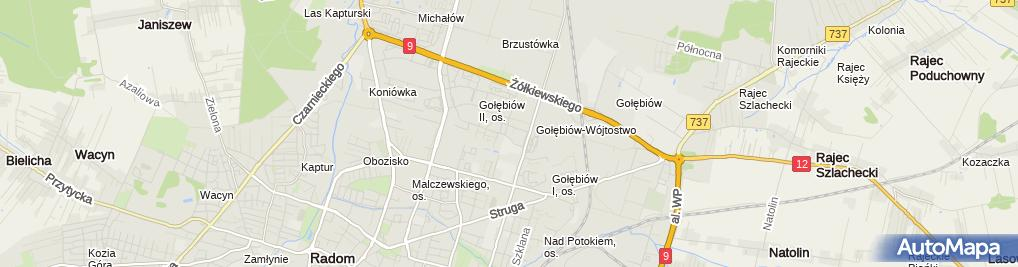 Zdjęcie satelitarne Hol Man M Kołacz i A Lesica