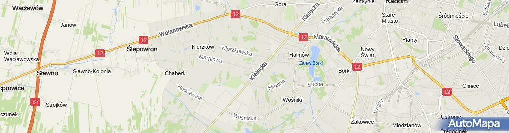 Zdjęcie satelitarne Indywidualna Praktyka Lekarska Beata Bryk