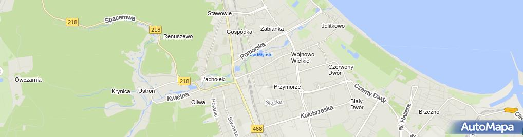 Zdjęcie satelitarne Indywidualna Praktyka Lekarska w Miejscu Wezwania Franciszek Zygmunt