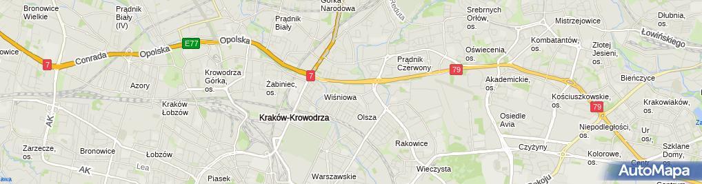 Zdjęcie satelitarne Interfin Załusiński Patrycjusz