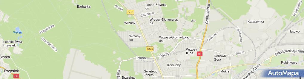 Zdjęcie satelitarne Izabela Duszyńska - Działalność Gospodarcza