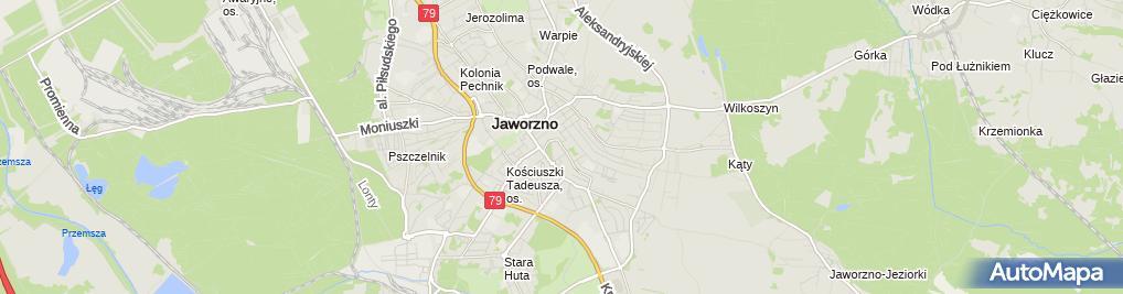 Zdjęcie satelitarne Jan Wojtyczek - Działalność Gospodarcza