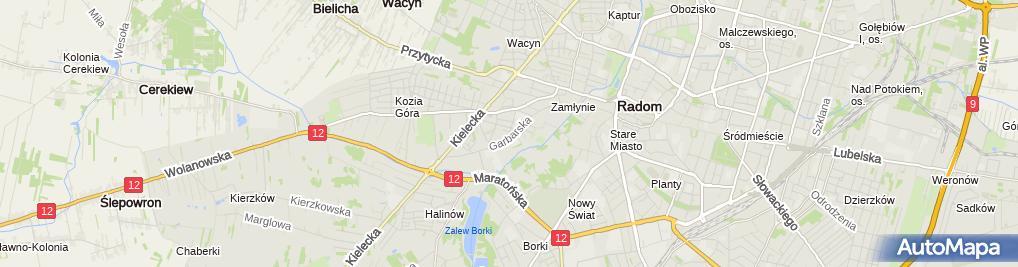 Zdjęcie satelitarne Janusz Wąsik - Działalność Gospodarcza