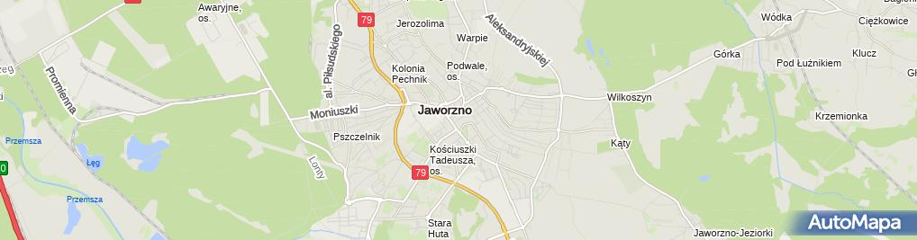 Zdjęcie satelitarne Jerzy Tyrna - Działalność Gospodarcza