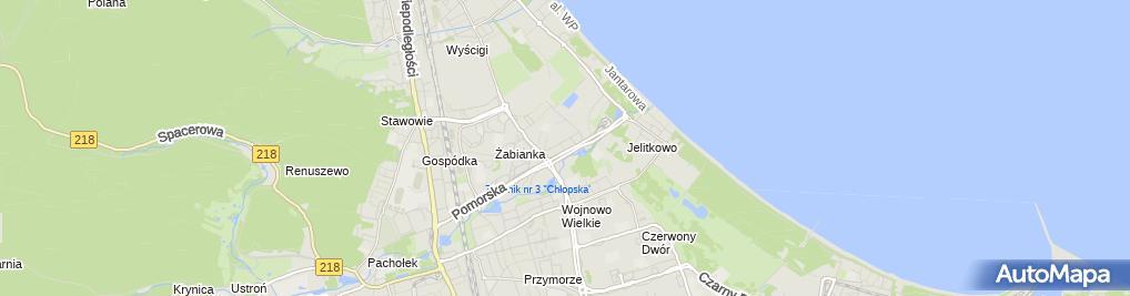 Zdjęcie satelitarne Juliusz Taniewski Mariusz Rogiński Control System