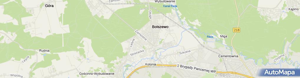Zdjęcie satelitarne Kaczmarek Wiesław Wiesław Kaczmarek Selmeco