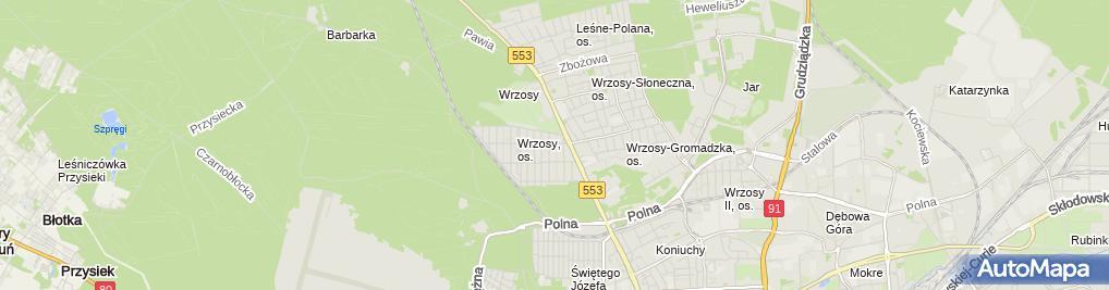 Zdjęcie satelitarne Kaczmarkiewicz Piotr Remis Firma