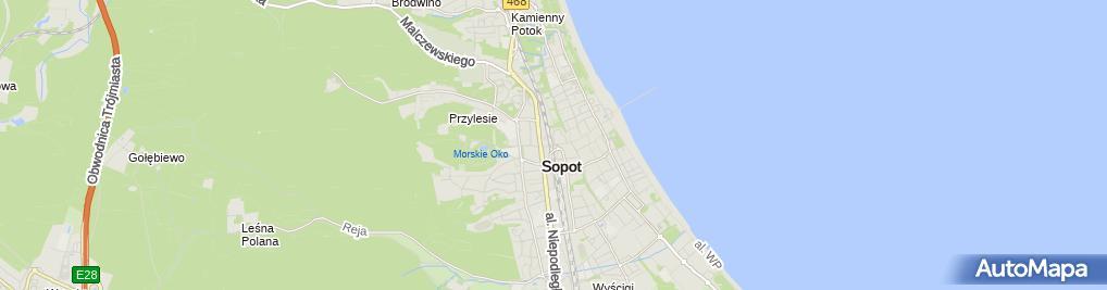 Zdjęcie satelitarne Kamila Ziętkowska Aktywator