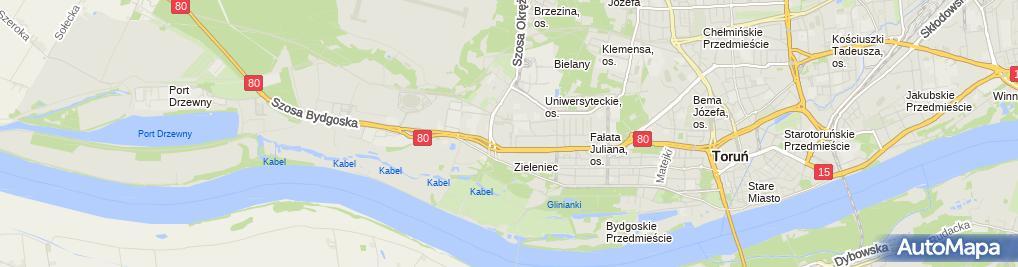 Zdjęcie satelitarne Kart Place - tor kartingowy