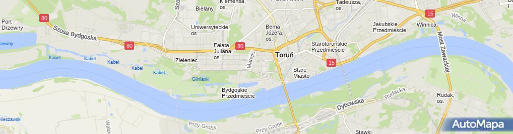 Zdjęcie satelitarne Klaudia Zielińska - Malarstwo, Konserwacja Dzieł Sztuki