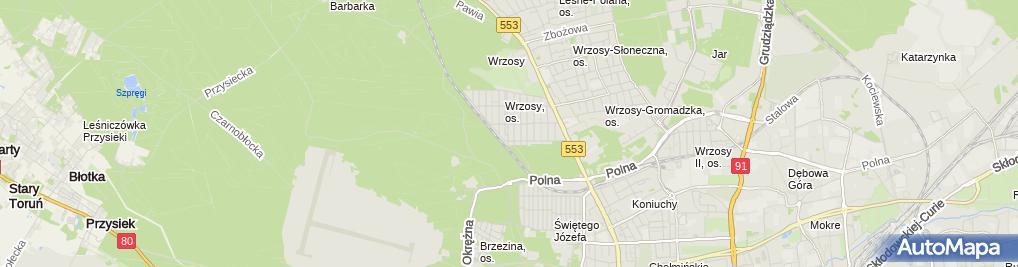 Zdjęcie satelitarne Krystyna Mirska - Działalność Gospodarcza