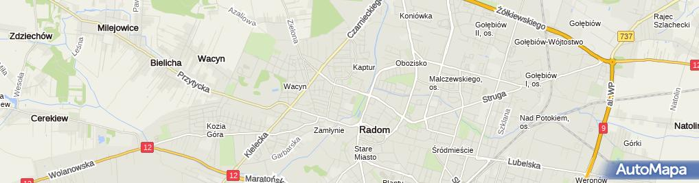 Zdjęcie satelitarne L.B.D.Info-Port Paweł Gil