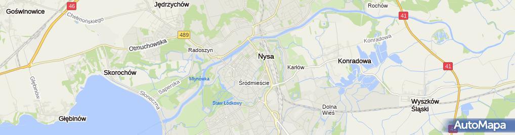 Zdjęcie satelitarne Leszek Górzyński - Działalność Gospodarcza