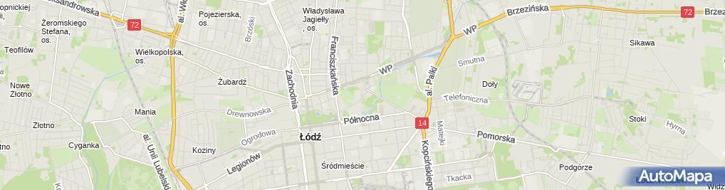Zdjęcie satelitarne Łosoś
